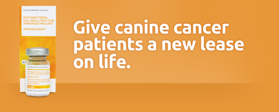 New Lease On Life immunocidin: give canine cancer patients a new lease on life